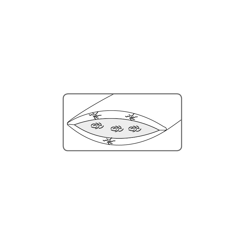 Dorbena 3-Kammer-Kissen  CLARKIA PREMIUM mit Gänsedaunen und Gänsefedern