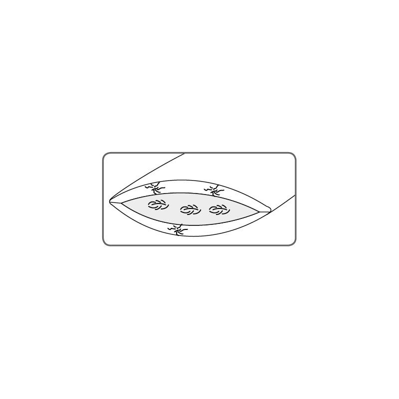 Dorbena 3-Kammer-Kissen  CALTHA CLASSIC low mit Entendaunen und Gänsefedern