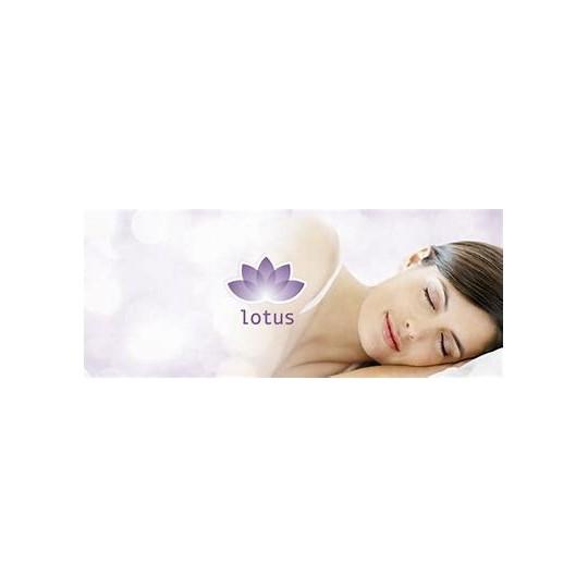 Luxus Kissen Lotus Tencel