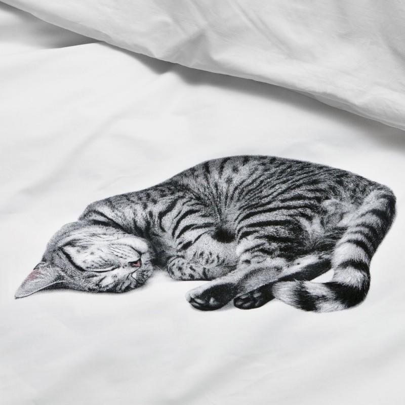 Snurk Bettwäsche Garnitur Katze Ollie 160x21065x100 Cm Chf 95