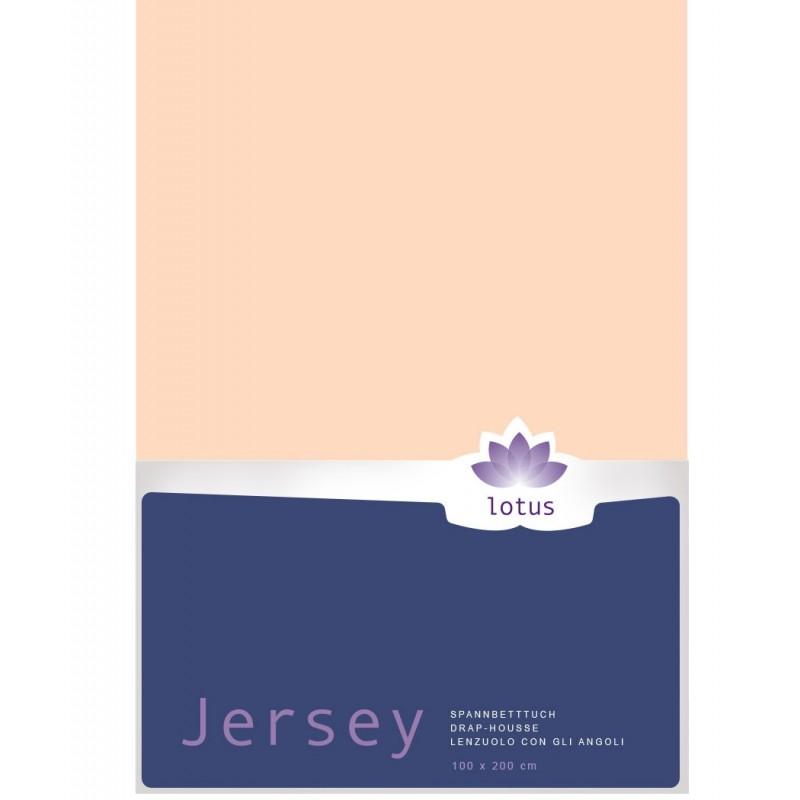 Fixleintuch Jersey Lotus Comfort