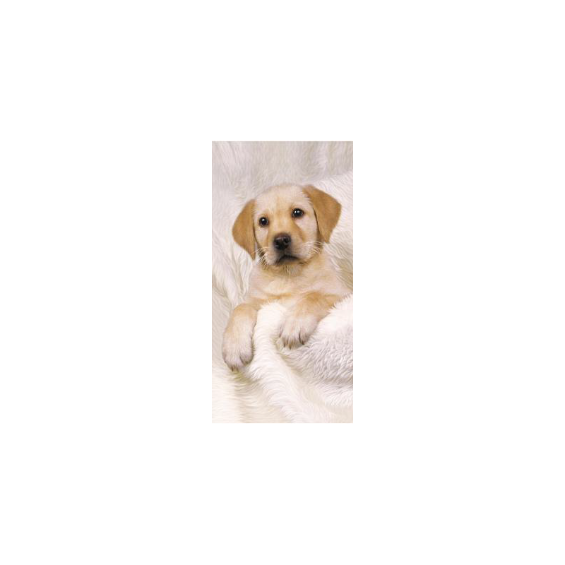 Strandtuch Hund 76x152 cm