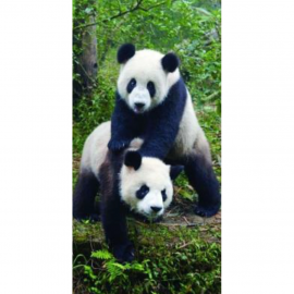 Strandtuch Panda 80x160 cm