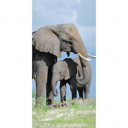 Strandtuch Elefant 77x155 cm