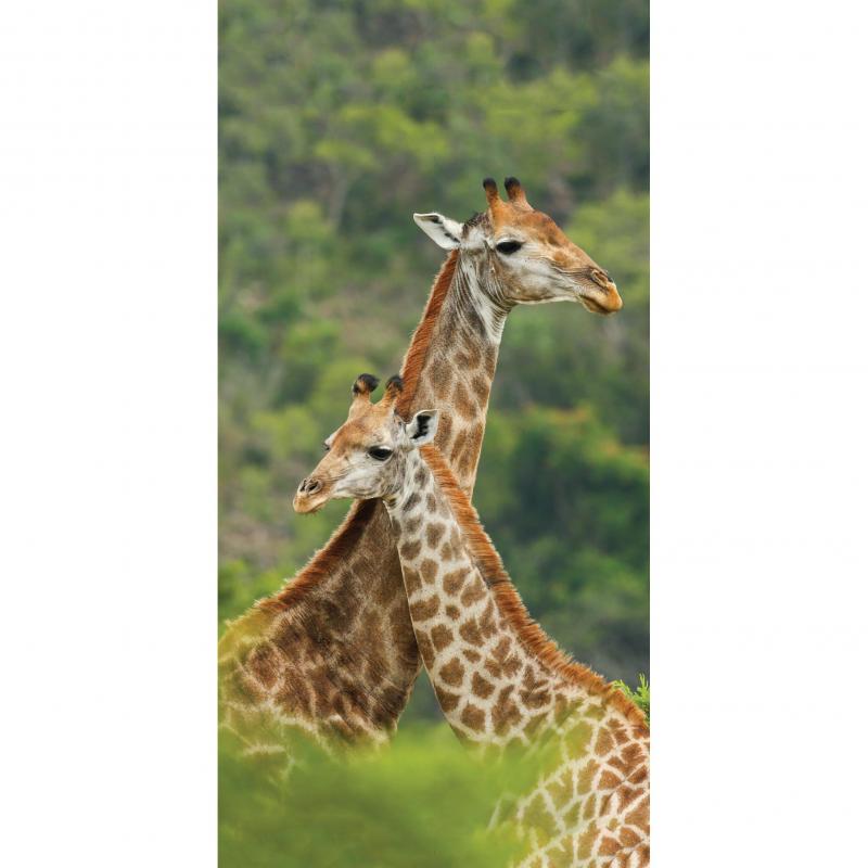 Strandtuch Giraffe 77x155 cm