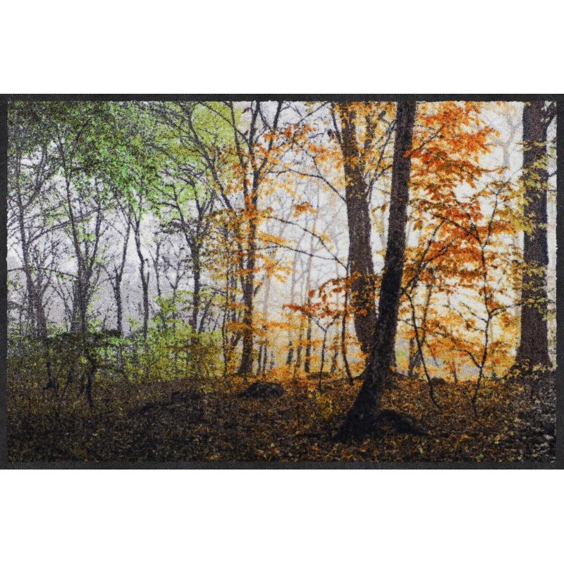 Fussmatte Jahreszeiten 50x75 cm