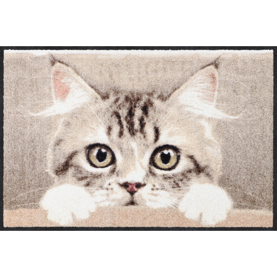 Fussmatte Nosy Cat 50x75 cm